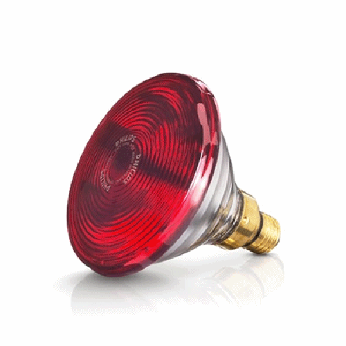 Bóng đèn hồng ngoại Philips/ osram 150w